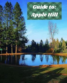 The Ultimate Travel Guide to: Apple Hill Cata, Activities To Do, Ultimate Travel, Northern California, Travel Guide, Apple, Places, Fun, Tourism