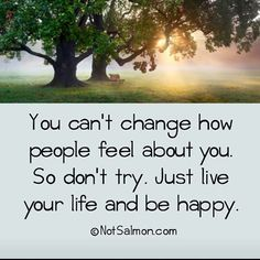 You can't change how people feel about you. Just live your life and be happy. Lessons Learned In Life, Life Lessons, Quotes To Live By, Life Quotes, Daily Quotes, Karen Salmansohn, Happy Words, Live Your Life, True Words