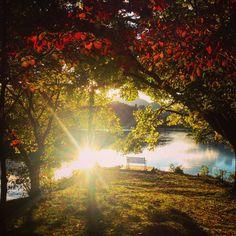 Fall along the walking trail of Lake Junaluska, NC