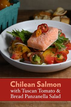 Our Chilean Salmon with Tuscan Panzanella Salad recipe is super-simple and super delicious! Seared Salmon Recipes, Salmon Salad Recipes, Fish Recipes, Seafood Recipes, Soup Recipes, Dinner Recipes, Cooking Recipes, Healthy Recipes, Recipies
