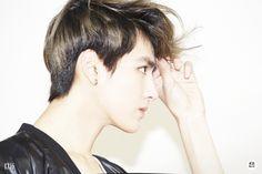 Kris / EXO