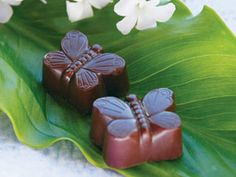 So cute! Lillie Belle Butterfly Cordials, Handmade Chocolates from Oregon.