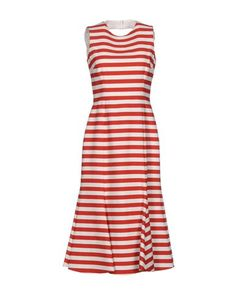 DOLCE & GABBANA . #dolcegabbana #cloth #dress #top #skirt #pant #coat #jacket #jecket #beachwear #