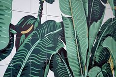 Our brand new collection went live today! Dream, explore and get inspired. The original 'Martinique Banana Leaf' was designed to be wallpaper for the iconic Beverly Hills Hotel in 1942 and is now available on IXXI. This IXXI is bananas.. B A N A N A S! #IXXI #ixxiyourworld #Hinson #bananaleaf #walldecoration #graphic #illustration #art #love #home #interior #inspiration #beautiful #wallart #favorite #nature #DIY #homedecor #banana #urban #urbanart