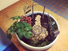 """""""Welcome to my garden"""" Mini garden Terrarium, Mini, Garden, Plants, Home Decor, Atelier, Nice Asses, Terrariums, Decoration Home"""