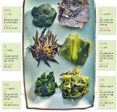 바다에서 건진 칼슘 '톳' 콩이랑 찰떡궁합 '미역' :: 네이버 뉴스