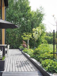 Talostakoti: puutarha