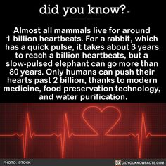 Almost all mammals live for around  1 billion heartbeats. For a rabbit, which  has a quick pulse, it takes about 3 years  to reach a billion heartbeats, but a  slow-pulsed elephant can go more than  80 years. Only humans can push their  hearts past 2 billion, thanks to modern  medicine, food preservation technology,  and water purification.  Source Source 2 Source 3