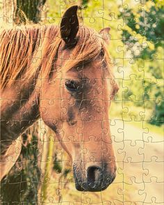 Watch the new #puzzle for today: Chestnut horse portrait. Get it for #free on #Appstore & #GooglePlay and #enjoy one of most #relaxing #puzzle game for #iphone,#ipad and #Android. #gamedev #jigsaw #rompecabezas #developer #jigsawpuzzle #jigsaw #puzzle #puzzles #jigsaws