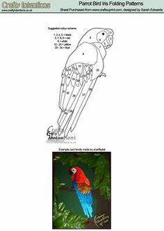 Parrot Bird Iris Folding Patterns on Craftsuprint designed by Sarah Edwards - Parrot Bird Iris Folding Patterns - Now available for download!