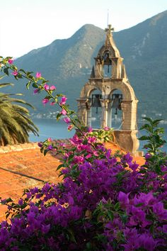 Perast  Montenegro across the water from Italy. Borders Serbia, Bosnia and Herzegovina