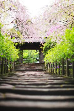 japan-overload: KAMAKURA by linton!! on Flickr.