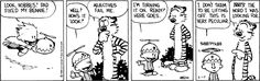 calvin and hobbes - calvin and his beanie