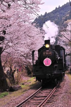 All the beautiful things of the world Aesthetic Japan, Japanese Aesthetic, Travel Aesthetic, Pink Aesthetic, Japan Train, Beautiful Places In Japan, Train Art, Old Trains, Train Pictures