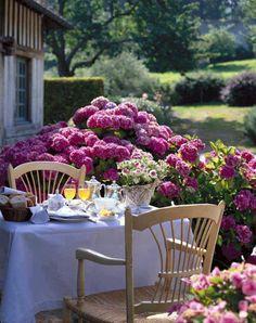 ♔ Breakfast on the terrace.