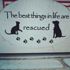 So True - & that goes for all animals that are rescued and find forever homes......