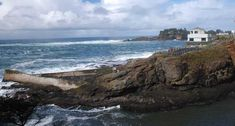 Whale Watching Center - Depoe Bay: mid-December through January and late March through June, then again July through mid-November