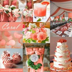 Coral Wedding Color is a spring and summer favorite. This pinkish orange color works well with the addition of turquoise or yellow, as well as neutral white shown!!