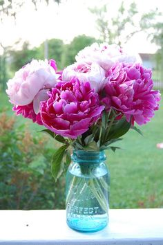 Lovely peonies ~