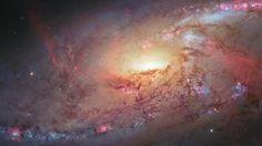 Một giả thuyết mới gây tranh cãi về lực hấp dẫn đã vượt qua bài thử nghiệm đầu tiên. Nếu tiếp tục thành công, giả thuyết này sẽ thay thế hoàn toàn nền vật lý hiện tại.  Được đề xuất lần đầu năm 2010, giả thuyết mới cho rằng lực hấp dẫn có thể phát sinh và tác động khác so với những gì mà Einstein đã tiên đoán. Một nghiên cứu độc lập của hơn 30.000 thiên hà đã tìm thấy bằng chứng đầu tiên cho giả thuyết này.