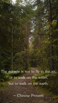 145 Best Find Yourself Images On Pinterest Spirituality Native