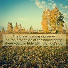 The grass is always greener on the other side of the house party, where you can hide with the host's dog.