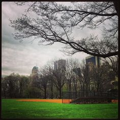 Central Park ballfields http://korenreyes.com