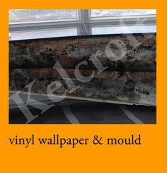 vinyl wallpaper inside hong kong air conditioning rooms causes mould / mold