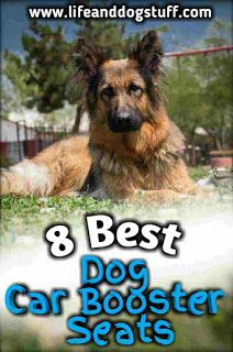 8 Best Dog Car Booster Seats Review Dog Car Booster Seat Dog