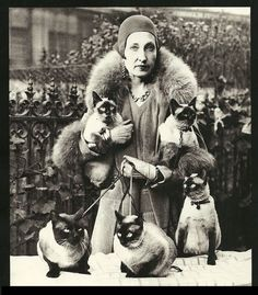 Mrs. Frederick H. Fleitman and 5 of her Siamese cats - Paris, 1930. #blackandwhite #cats #paris #siamese #gato #chat #cat #cute #vintage