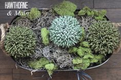 I love to decorate with moss.  See how easy this center piece is to replicate!!