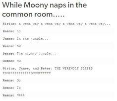 books, funny, harry potter, hermione granger, hogwarts