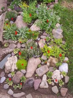 love this rock garden