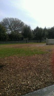 Meadows Foundation Dog Park, East Dallas