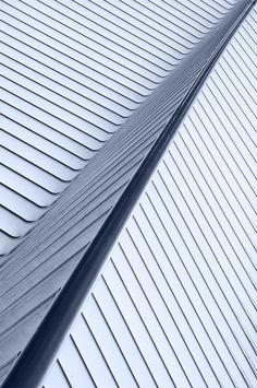 1X - The feather of Calatrava by Jef Van den Houte