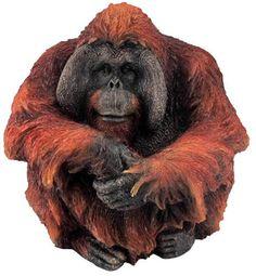 Male Orangutan, Art Statue-Sculpture-Figurine available at AllSculptures.com