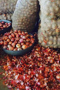 Onions - Market - India
