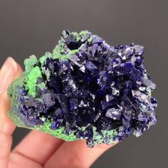 iRocks.com item code TSU17-19 • Azurite and arsentsumebite and form a beautiful, contrasting, aesthetic specimen from Tsumeb, Namibia. This is the type locality for arsentsumebite, and the azurites reach up to 8mm. Estimated to be mined over 100 years ago! Pricing, photos, and more info on iRocks.com - search item code TSU17-19.