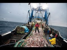 National Geographic – New Discovery SHIP WORLD SERIES LIFE AT SEA FISHING VESSEL – Documentary 2017