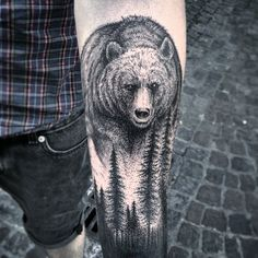 I like the shading on this bear. I would love to see a more calm. Sovereign. Collected Expression if possible - Send to Chad - Jeff S