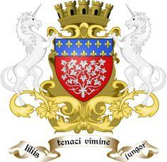 image figurant les armoiries d'Amiens Amiens, Gothic Art, History, City