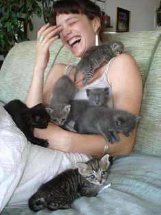 """You know you are going to be an old cat lady when you look at this and think """"this is what heaven is like"""" lol!"""