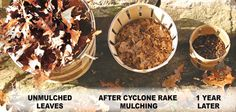 Creating Mulch With Your Cyclone Rake - My Site