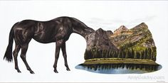"""Indispensable by artist, Amy Guidry, acrylic on canvas, 20""""w x 10""""h  #art #painting #horse #landscape #surrealism #surreal #surrealist #contemporaryart #vegan #nature #acrylic #canvas #fineart"""