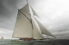 """""""Mariquita"""" in the first of four races for the Westward Cup off Cowes, June The restored Fife sloop on deck, built restored by Fairlie Restorations is the sole survivor of her class, which once numbered four. Photo by Rick Tomlinson Classic Sailing, Classic Yachts, J Class Yacht, Sailboat Racing, Old Sailing Ships, Naval, Yacht Boat, Sailing Yachts, Yacht Design"""