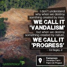 Another perspective on why we need to protect forests!