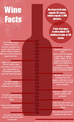 wine-facts-4-infographic