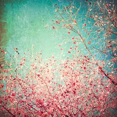 So many losts  - Fall photography, sky, blue turquoise, home decor, colorful, rustic, tree leaves, pink red, vintage, surreal dreamy 8x8. $25.00, via Etsy.