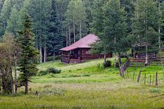 Location for the O'Conner Farm Monsoon Rain, Indian Paintbrush, Forest Mountain, White Mountains, Arizona, Cabin, House Styles, Travel, Image