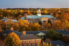 Wake Forest University | Winston-Salem, NC | A medium-sized (4,800 undergrads) liberal arts and research university in a suburban setting in North/Central NC. Admissions: Selective (34%). Test-optional.